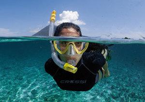pmt snorkeling le pradet